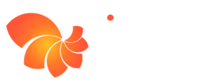 Timmus Ltd