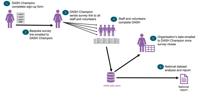 The DASH Process